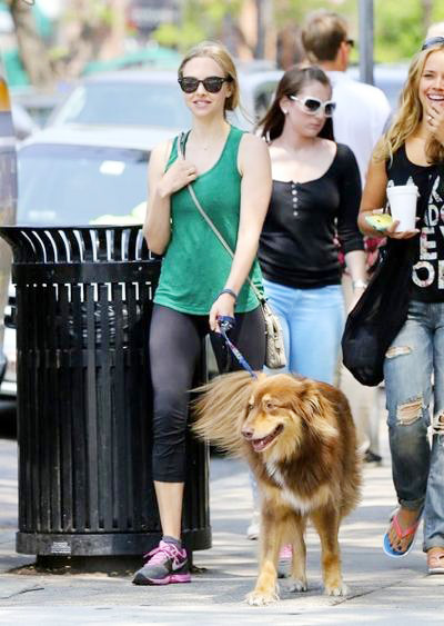 Amanda+Seyfried+Amanda+Seyfried+Walks+Dog+20140815_01.jpg