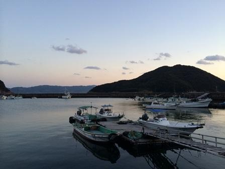 今日の藻津港①