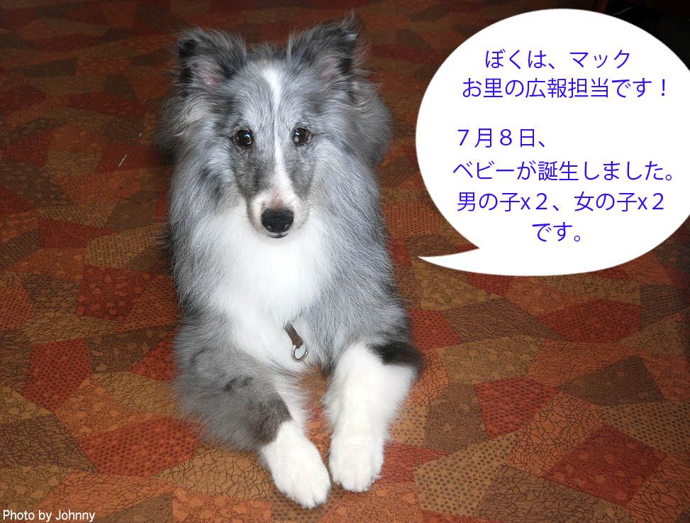 Photo2014_0726_01.jpg