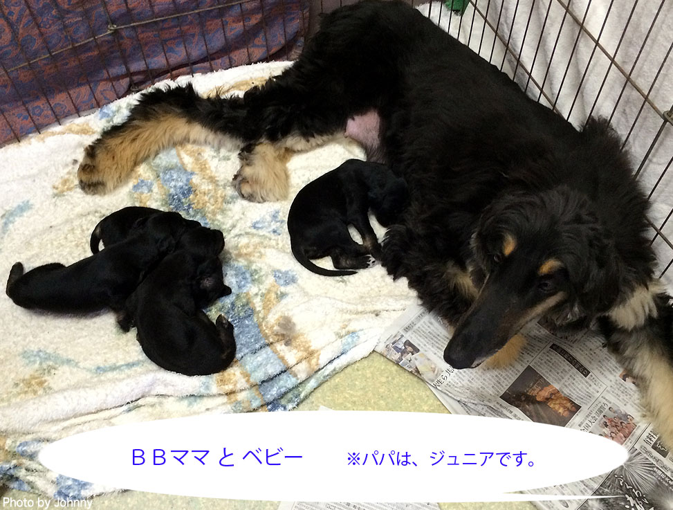 Photo2014_0726_02.jpg