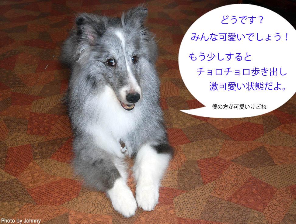 Photo2014_0726_09.jpg