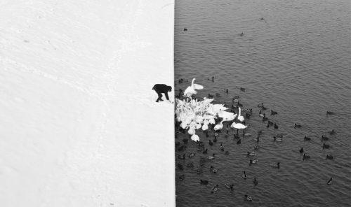 best-photos-on-the-internet-01.jpg