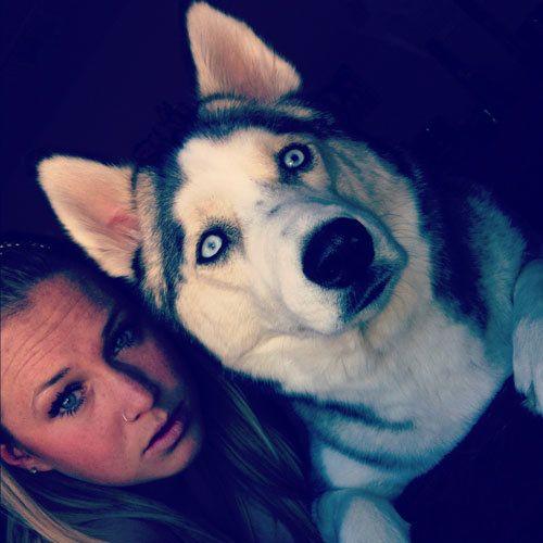 dog-companions-34.jpg