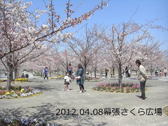 20120408幕張さくら広場