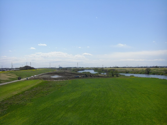 20140405関宿城と権現堂公園 (3)