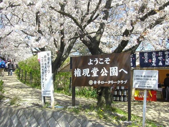 20140405関宿城と権現堂公園 (6)