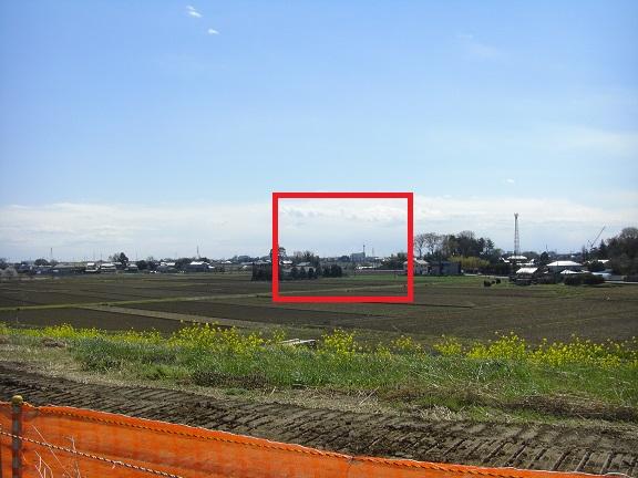 20140405関宿城と権現堂公園 (13)