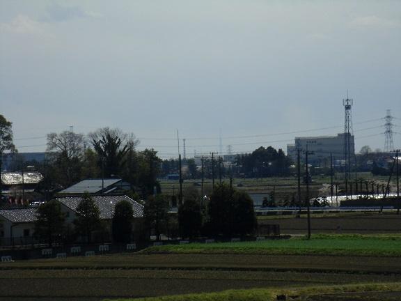 20140405関宿城と権現堂公園 (14)