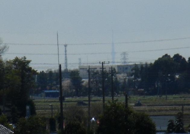 20140405関宿城と権現堂公園 (15)