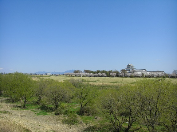 20140405関宿城と権現堂公園 (19)