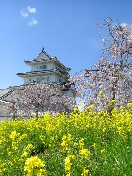 20140405関宿城と権現堂公園 (20)