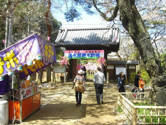 20140405関宿城と権現堂公園 (21)