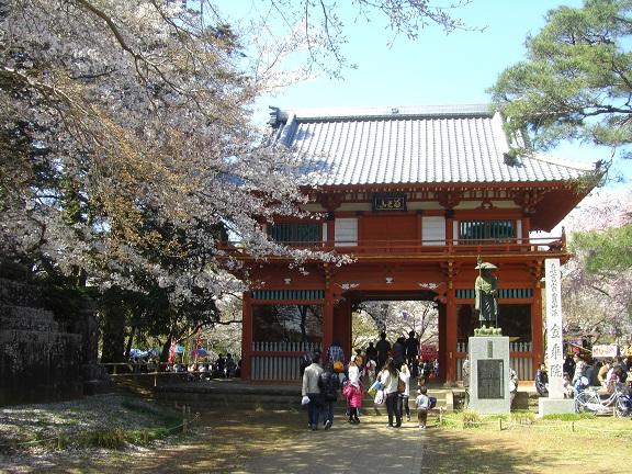 20140405関宿城と権現堂公園 (22)