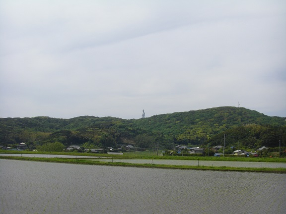 20140503湾イチ その4 (3)