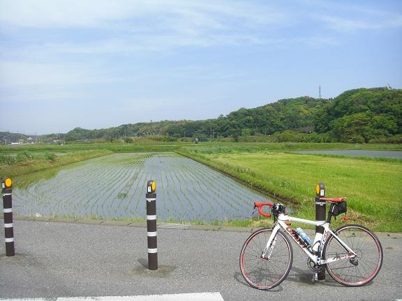 20140503湾イチ その4 (4)