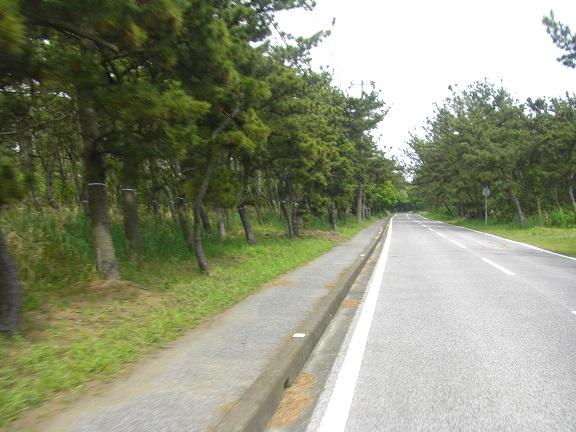 20140503湾イチ その4 (8)