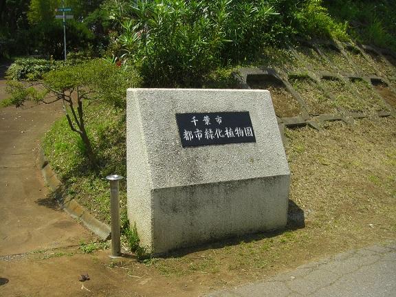 20140531昭和の森他 (3)
