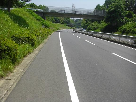 20140531昭和の森他 (6)