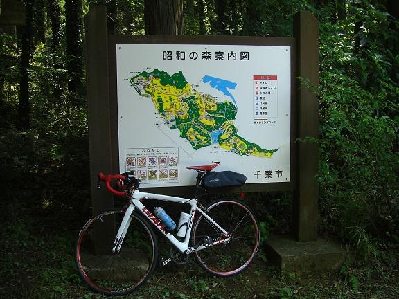 20140531昭和の森他 (11)