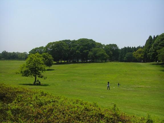 20140531昭和の森他 (19)