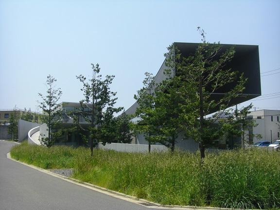 20140531昭和の森2  (1)