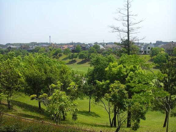 20140531昭和の森2  (7)
