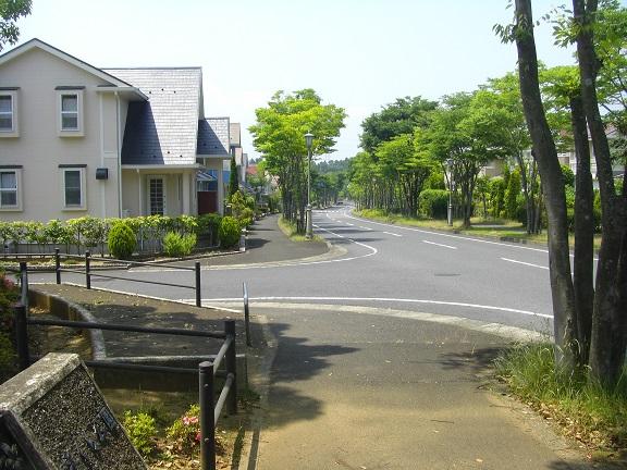 20140531昭和の森2  (8)