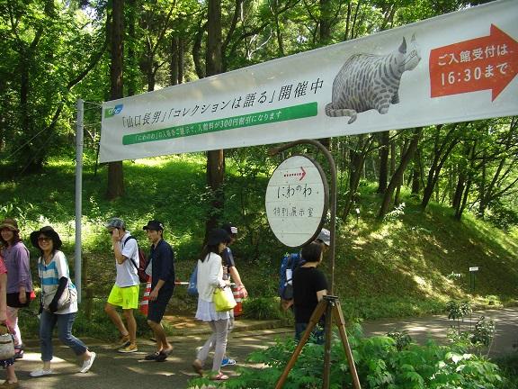 20140531昭和の森2  (15)