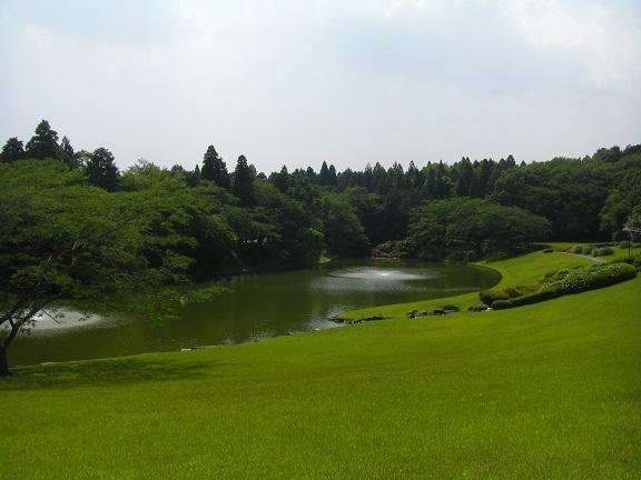 20140531昭和の森2  (12)