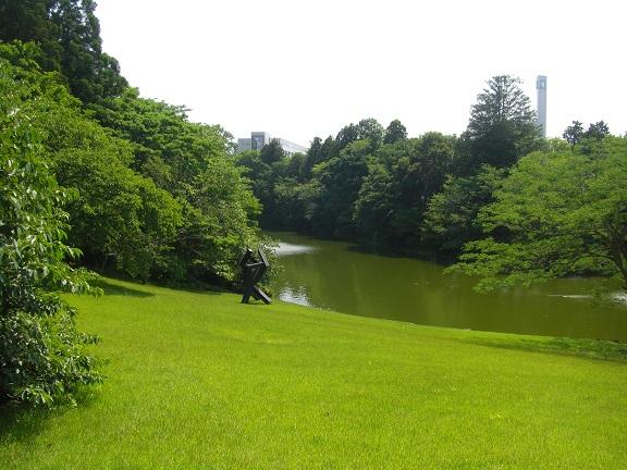 20140531昭和の森2  (13)