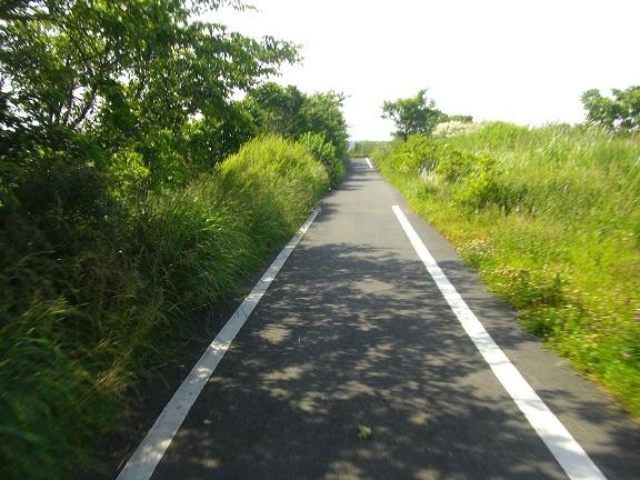20140531昭和の森2  (22)