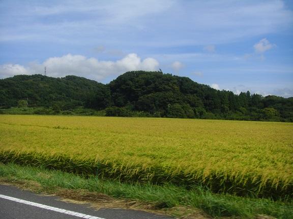 20140815湾イチ  (36)