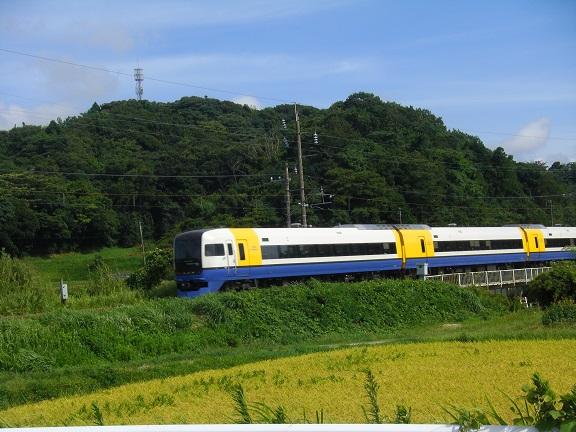 20140815湾イチ  (37)