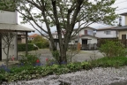 201404_21 庭の桜が