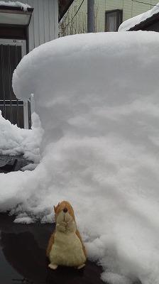 20130215の雪03