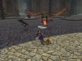 DragonsProphet_20140715_191227.jpg