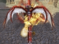 DragonsProphet_20140715_195525.jpg