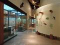 4月27日 西表野生生物保護センター その1