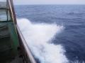 5月6日 の波