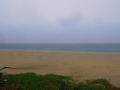 5月20日 ウミガメの浜 その1