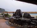5月20日 ウミガメの浜 その2