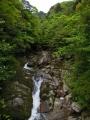 5月21日 白谷雲水峡 その3