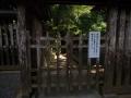 5月31日 天岩戸神社 その3