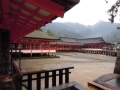 6月17日 厳島神社 その1