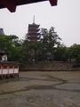 6月17日 厳島神社 その2