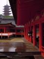 6月17日 厳島神社 その5