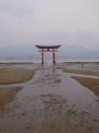 6月17日 厳島神社 その8
