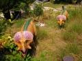 6月25日 カブトガニ博物館 恐竜公園 その2