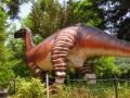 6月25日 カブトガニ博物館 恐竜公園 その3