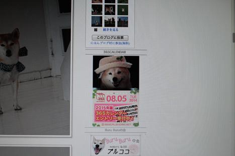 20140807-2.jpg